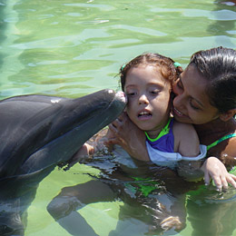 Dolphin Therapy for Child with Cerebral Palsy