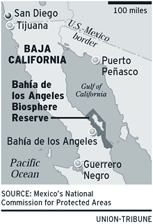Bahia De Los Angeles Map.Conservationists Cheer Marine Region S Designation