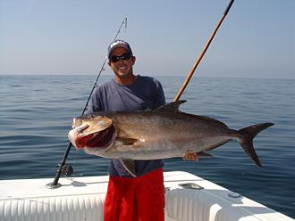 Pv offers deep sea fishing at its best for Deep sea fishing puerto vallarta