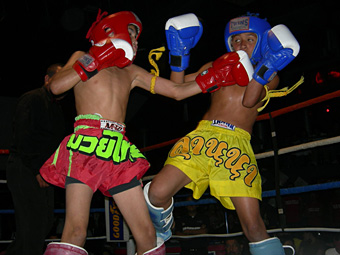 Directly. amateur muay thai fights