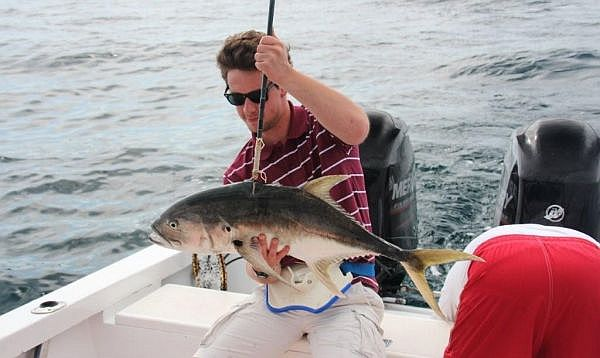 A quest for marlin deep sea fishing in puerto vallarta for Deep sea fishing puerto vallarta
