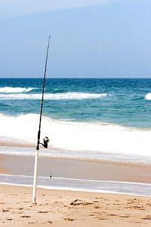 5th jarretaderas surf fishing tournament in riviera nayarit for Outer banks surf fishing tips