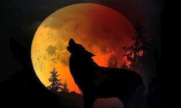 red moon 2019 puerto rico - photo #44
