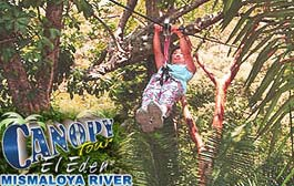 Canopy Tour El Eden Corner of Ignacio Vallarta u0026 Venustiano Caranza Tel 225-4049. Email concierge@canopyeleden.com. Website CanopyElEden.com & Canopy Tour El Eden - Where the Movie